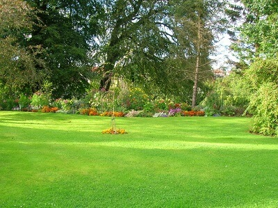 Lawn Mowing Services in Dorset and Bournemouth