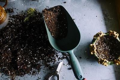 Garden Soil from Dorset
